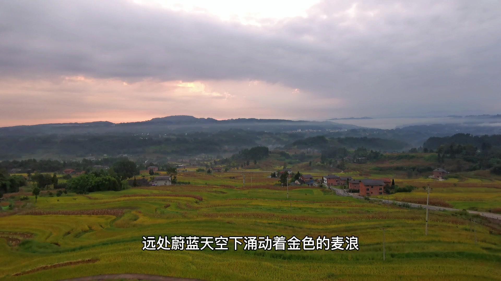 """重庆也有""""元阳梯田"""",爱摄影-荣耀俱乐部"""
